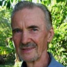 La conspiración del Bórax: El final de la curación de la artrosis