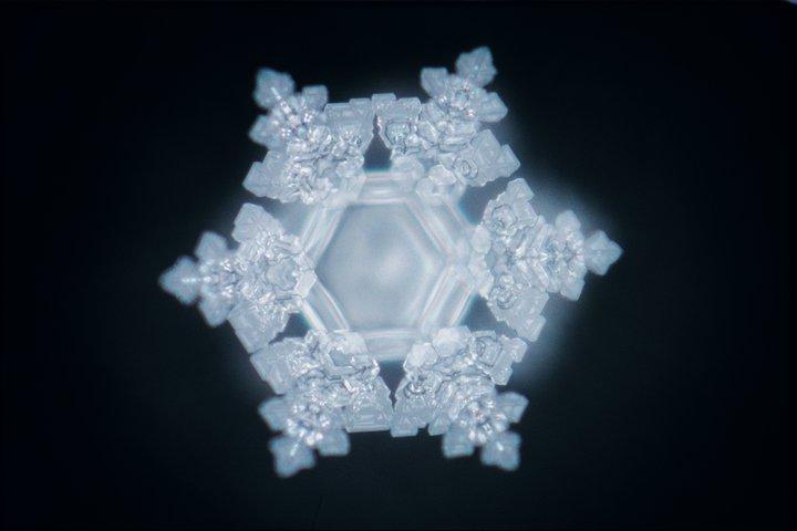 Masaru Emoto Cristal de agua